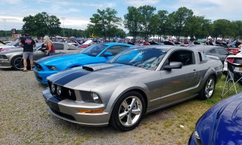 Ford Mustangs at American Muscle Mustang Show 2019