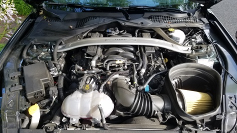 2019 Ford Mustang Bullitt MP002