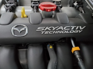 Mazda MX5 Miata Engine with Red MX5 Oil Cap