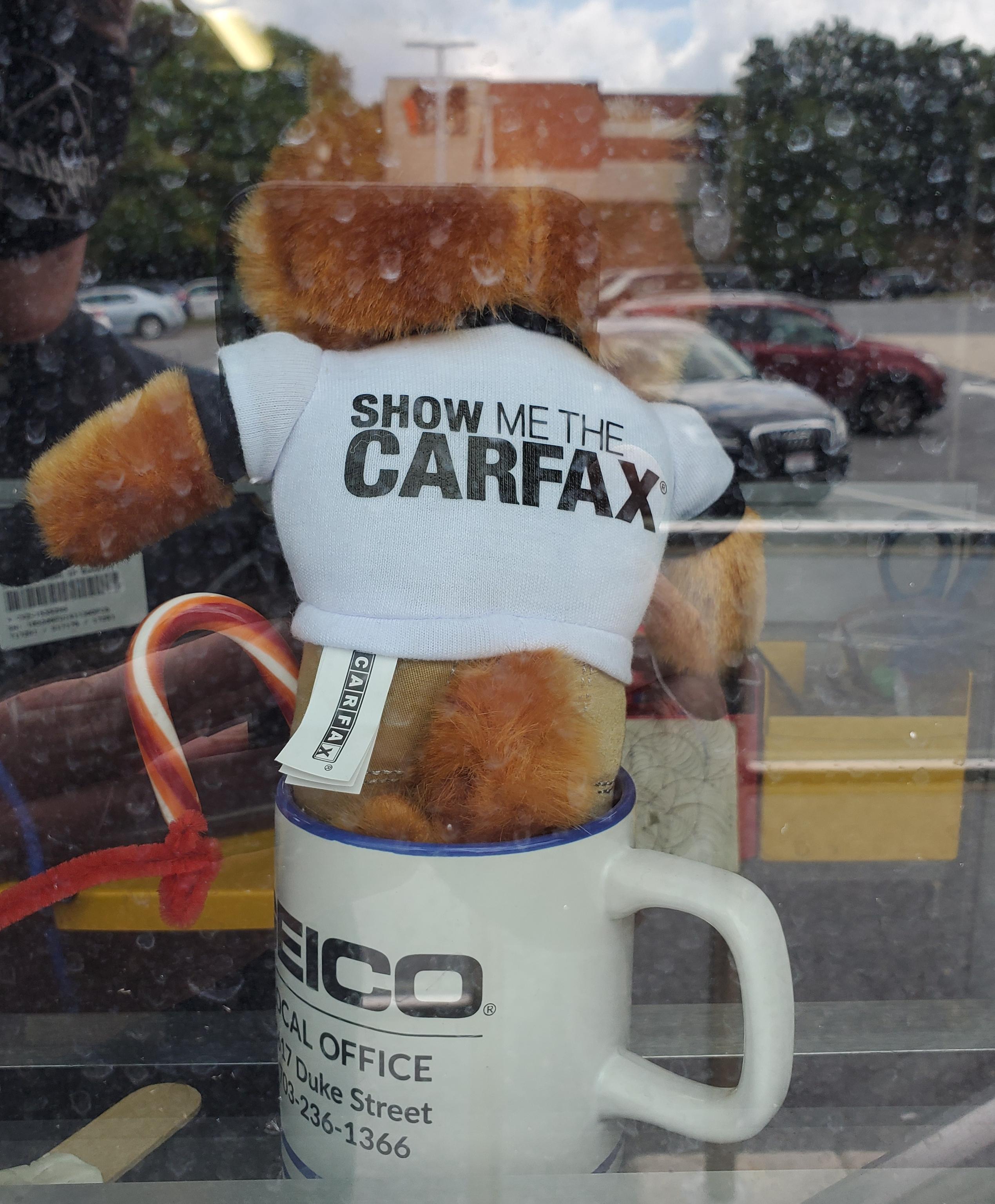CarFax stuffed animal mascot in coffee cup